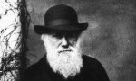 Charles Darwin letter returned to Smithsonian over 30 years after theft